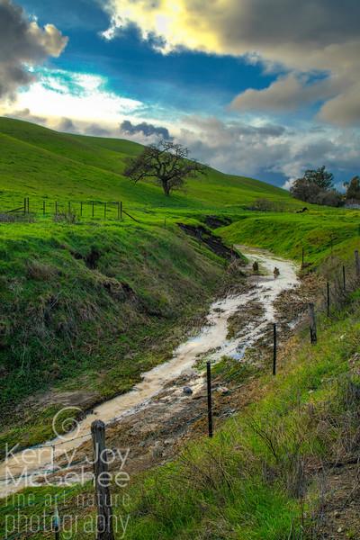Livermore Creek