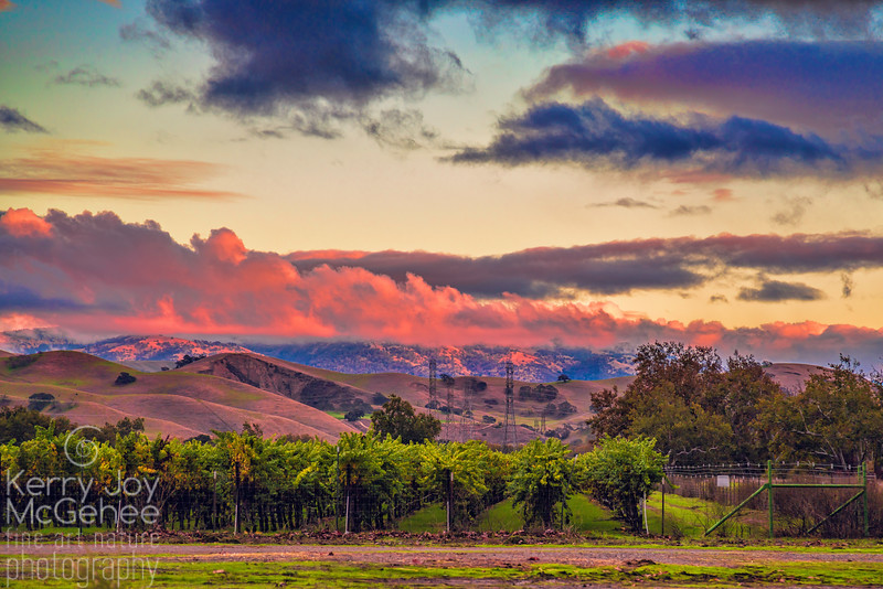 Pink Clouds Over Livermore Hills