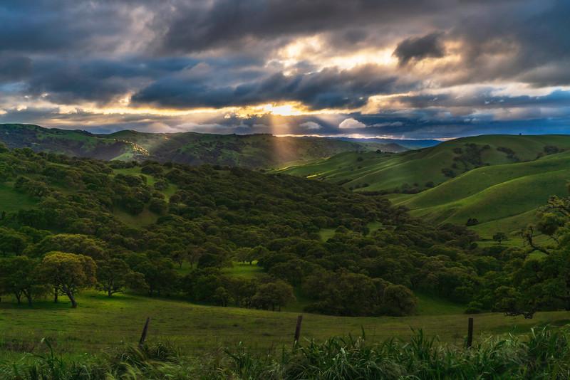 Spotlights on the Valley