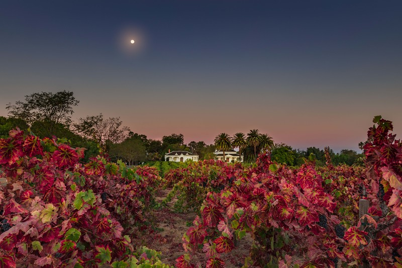 Harvest Moon at Ravenswood