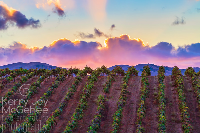 Vines Peak at Sunset