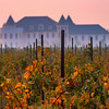 Autumn Vines and Chateau