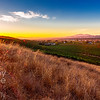 Sunset over Livermore Vines