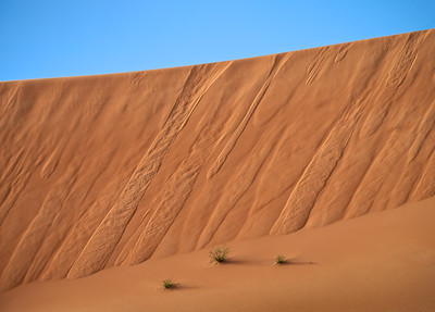 Empty Quarter, UAE