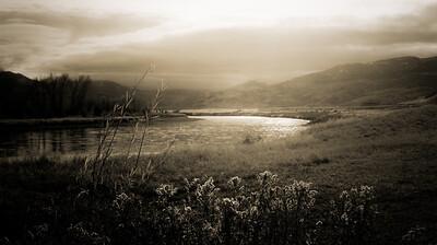 YS River sepia