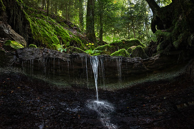 Swabian Forest, Baden-Wuerttemberg, Germany