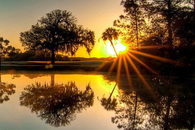 Reflected Rays