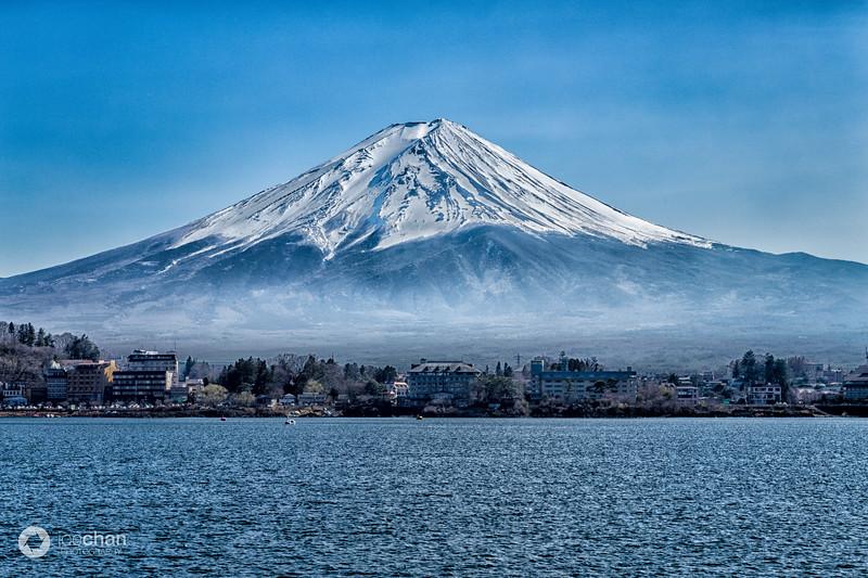 Spring at Mount Fuji
