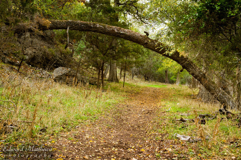 Colorado Bend State Park in Texas