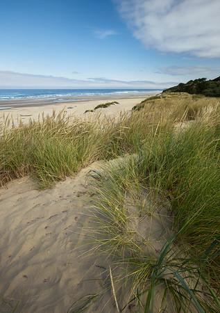Beach Vibes - Newport, Oregon