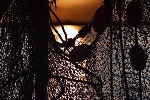 Fisherman's Wharf - Sète