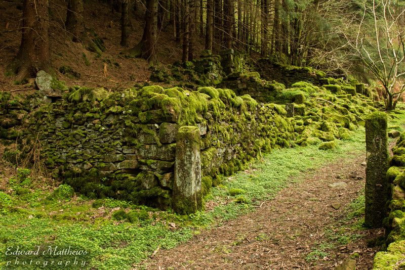 Moss covered ruins in Peak District, England