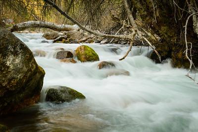 Cove's High Creek