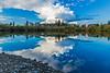 Ponds Reflection