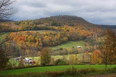 Buck Brook farm. Sullivan County, NY.