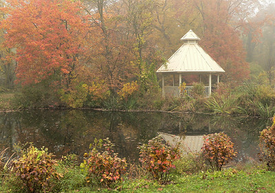 Tanglewood Preserve in Nassau County, NY. Taken on a foggy fall morning.