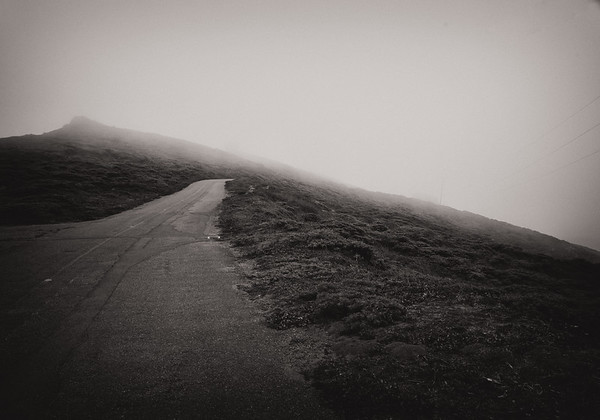 Point Reyes Road in Fog