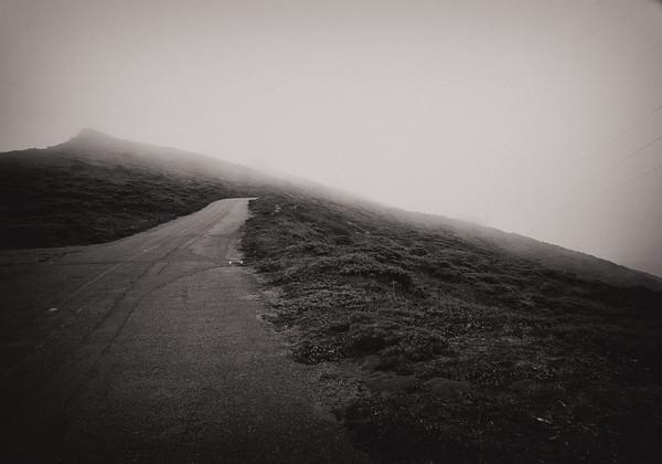 Point Reyes Road in Fog