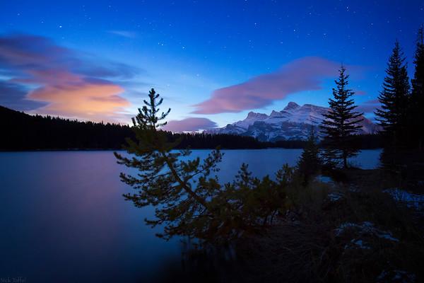 Looking Up - Banff National Park, Alberta