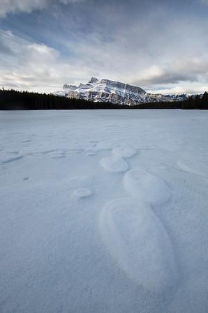 Polka Dots - Banff National Park, Alberta