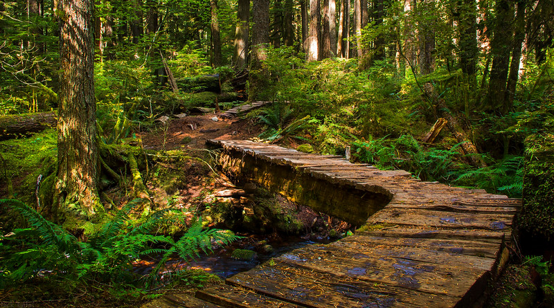 Boardwalk - Whistler, British Columbia