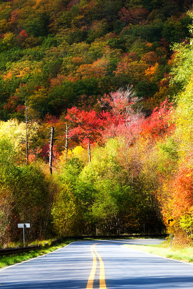 Cherohala Skyway National Scenic Byway, Tennessee USA
