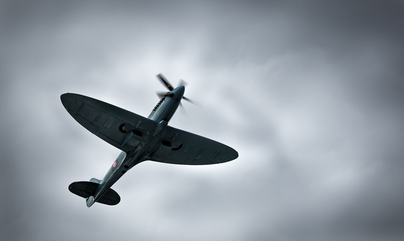 'Spitfire' - Shot taken at Burghley Horse Trails 2013, Stamford, Lincolnshire