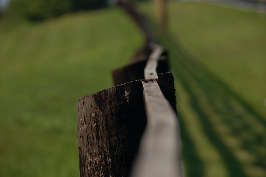 Curvy Fence. Photograph taken outside Louisville, Kentucky