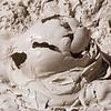 Mud Volcano Study I - Yellowstone NP, WY