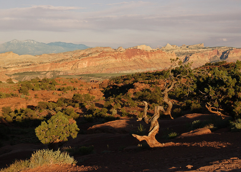 Capitol Reef NP at Sunset near Torrey, UT.