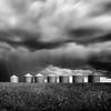 Stricken - Airdrie, Alberta