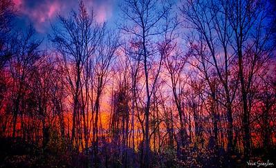 Sunset-4671_HDR