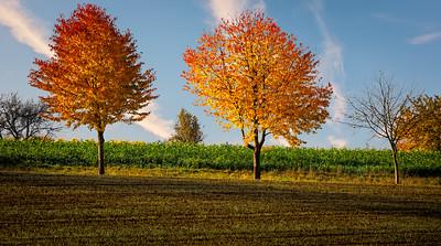 Affalterbach area, Germany