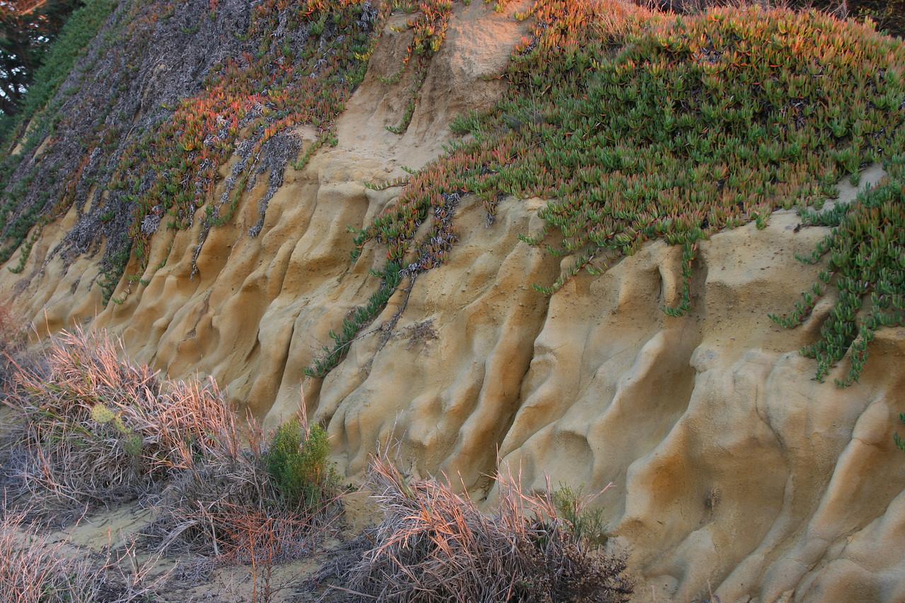 Cabrillo National Monument Park, San Diego, CA