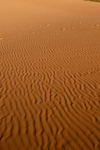 Coral Pink Sand Dunes State Park, Utah