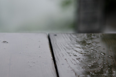 Close-up of puddle on wet wooden bridge