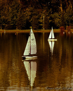 Toy sailboats at the pond in Crossings of Colonie