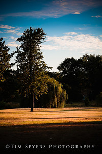 Forest_Park-20120728-210-18