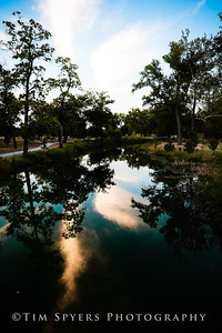 Forest_Park-20120728-210-56