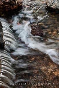 Forest_Park-20120728-210-27