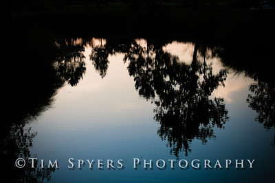 Forest_Park-20120728-210-52