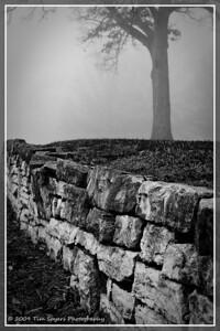 JB_Cemetery-20091121-110