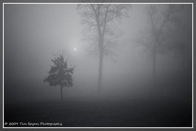 JB_Cemetery-20091121-113