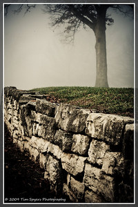 JB_Cemetery-20091121-109