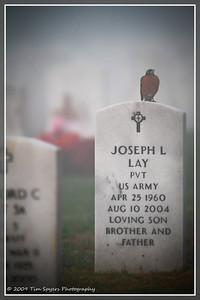 JB_Cemetery-20091121-275