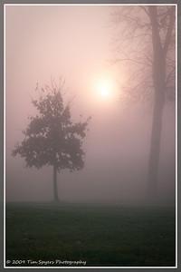 JB_Cemetery-20091121-142