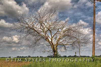 Country-126-106_7_8_9