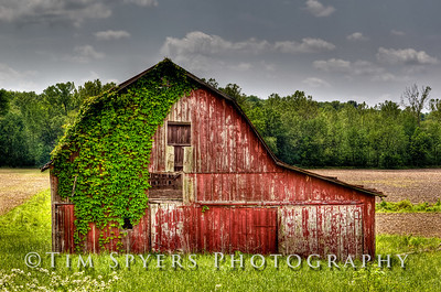 Country-126-153_4_5_6