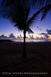 Puerto_Rico-20100614-165-320
