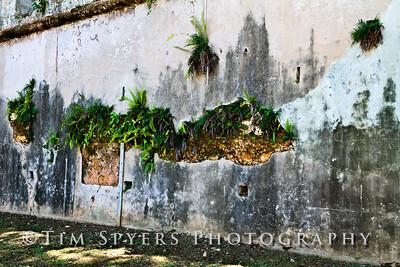 Puerto_Rico-20100611-162-44